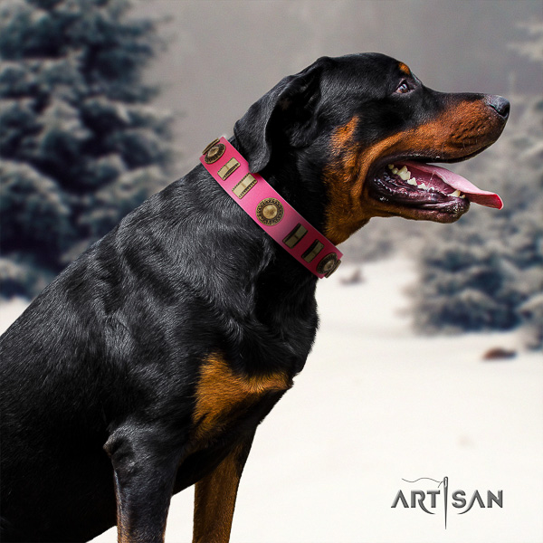 Rottweiler easy wearing natural leather collar for your attractive dog