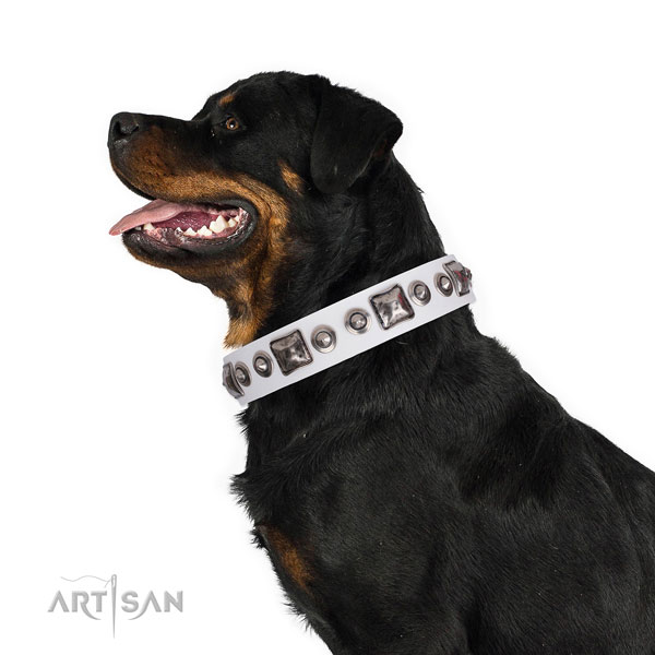 Rottweiler comfortable natural genuine leather dog collar for handy use