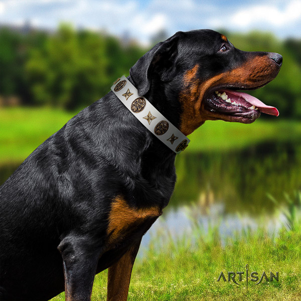 Rottweiler basic training leather collar for your beautiful dog