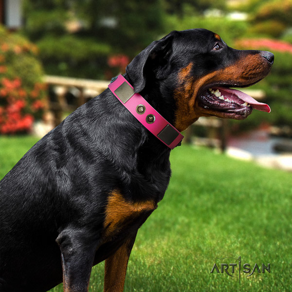 Rottweiler handy use genuine leather collar for your handsome canine