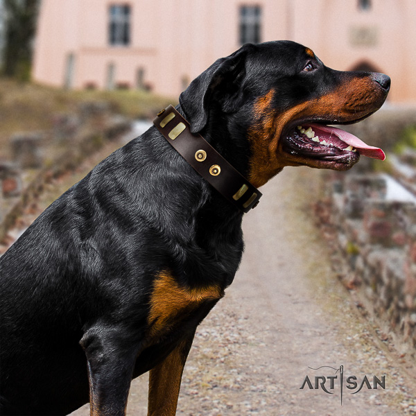 Rottweiler stylish walking natural leather collar for your lovely doggie