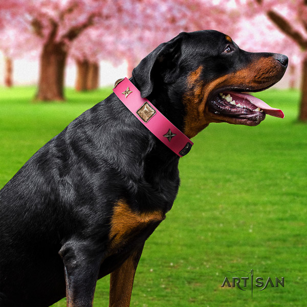 Rottweiler everyday use leather collar for your lovely pet