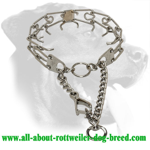 Chrome Plated Rottweiler Pinch Collar with Scissor Type  Snap Hook