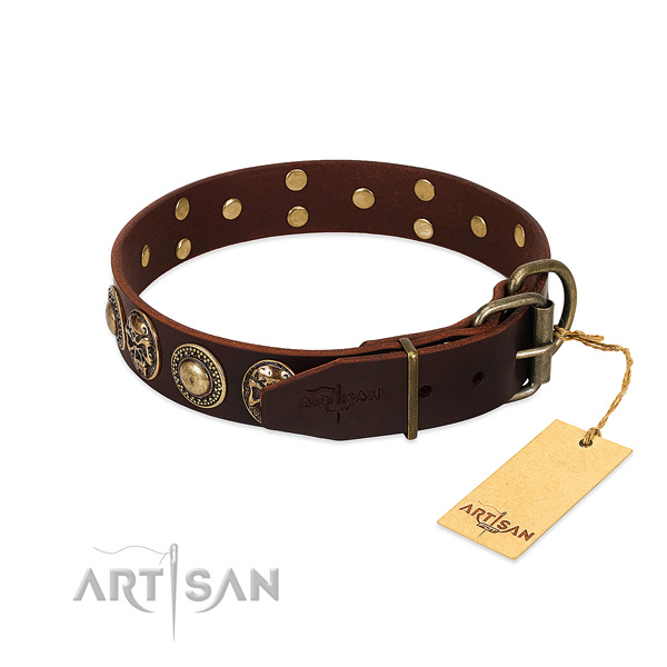 Everyday use full grain natural leather collar with decorations for your doggie