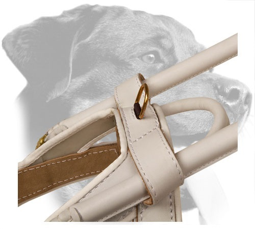 Brass D-Ring on White Leather Guide Dog Harness for Easy Leash Attachment