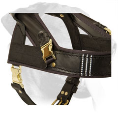 Brass Buckles and Reflective Straps on Leather Guide Dog Harness