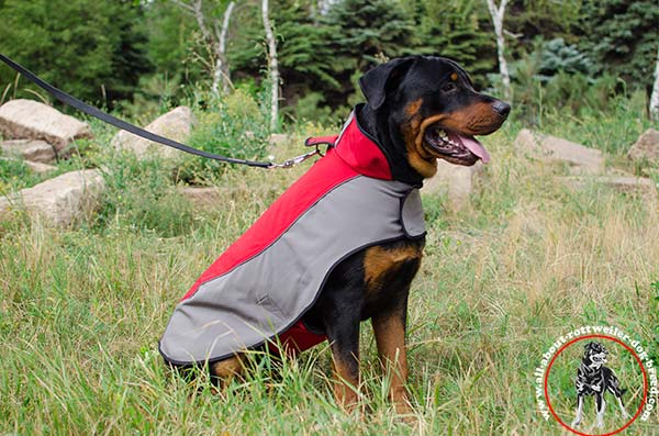 Reliable nylon canine jacket for Rottweiler