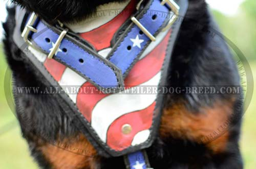 Stylish American Flag Painted Chest Plate on Leather Dog Harness