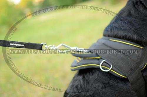 Topnotch Rottweiler Harness