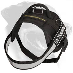 All weather Rottweiler Dog Nylon Harness