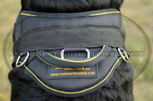 Exclusive Rottweiler Dog Harness