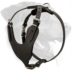Professional Rottweiler Dog Harness