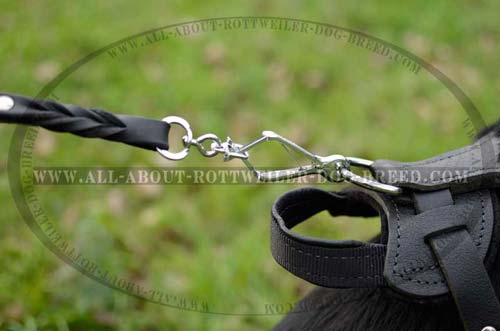 Safe Rottweiler Dog Leather Harness