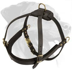 Rottweiler Breed Harness with rust-proof hardware
