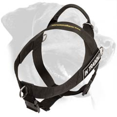 Rottweiler Nylon Harness with handle