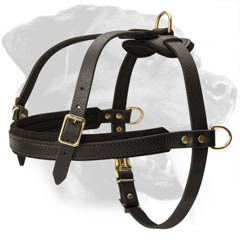 Safe Rottweiler Dog Harness