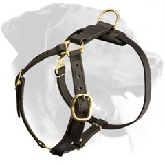 Strap-like Design Rottweiler Dog Leather Harness
