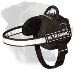 Rottweiler Dog Harness with patches