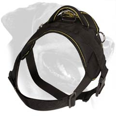 Light weight Rottweiler Dog Harness