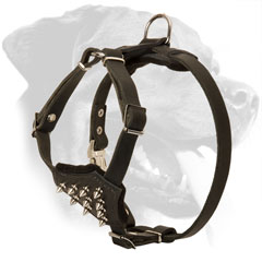Comfortable Padded Leather Rottweiler Puppy Harness with Spikes