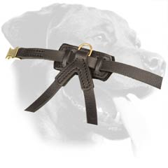 Leather Dog Harness Stitched Back Plate