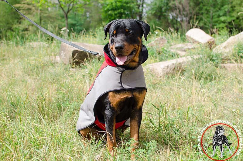 Order Nylon Rottweiler Rain Coat | Winter Dog Walking