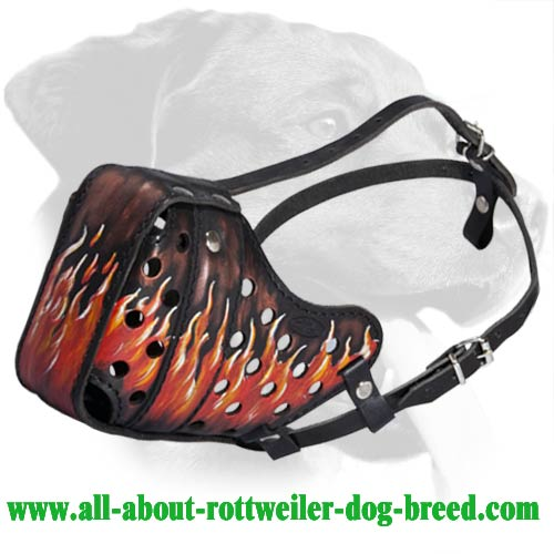 Adjustable Agitation/Attack Training Leather Muzzle for Rottweiler