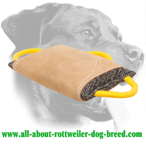 Rottweiler French Linen Bite Pad for Advanced Training