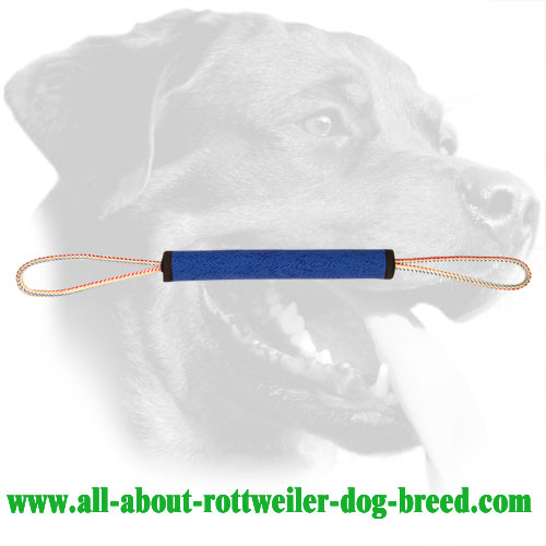 Durable French Linen Rottweiler Play Roll