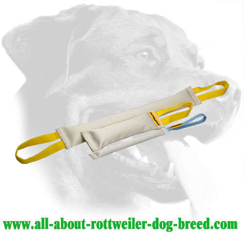 Rottweiler Bite Tugs Set Made of Durable Fire Hose