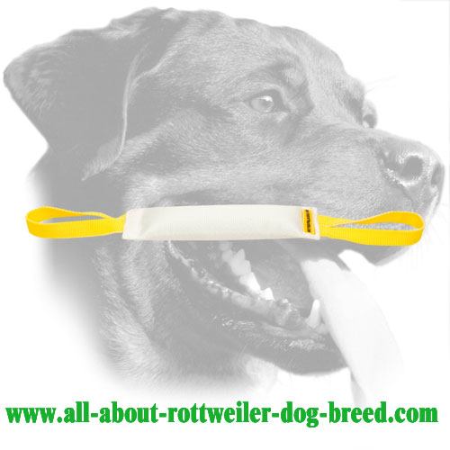 Extra Durable Fire Hose Rottweiler Dog Bite Tug