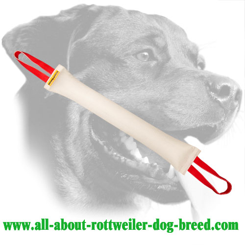 Safe and Durable Rottweiler Bite Tug For Developing Bite Skills