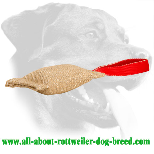 Jute Rottweiler Bite Tug for Active Training