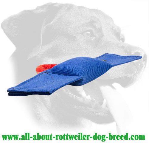 French Linen Dog Bite Pad for Rottweiler with Convertible Shape