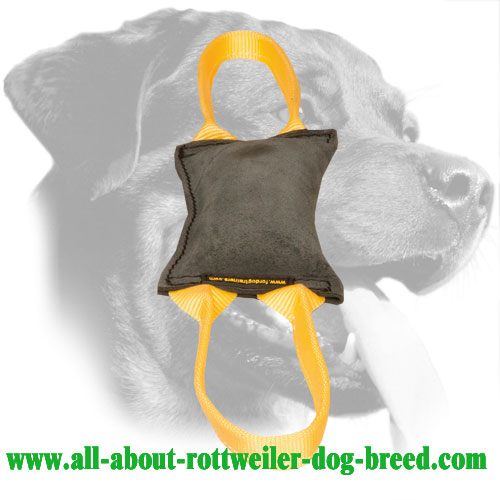 'Firm Bite' Leather Rottweiler Bite Tug with Two Handles