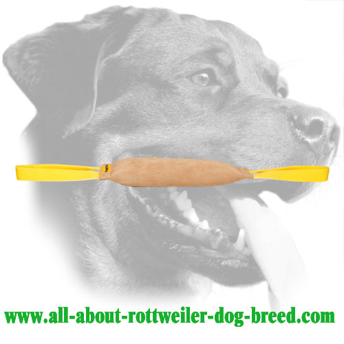 Hard Genuine Leather Rottweiler Bite Tug With Two Handles