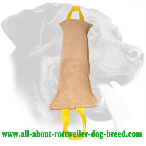 Rottweiler Leather Bite Tug for Developing Bite Skills