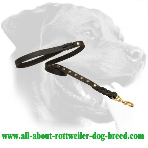Leather Leash with studs for Rottweiler