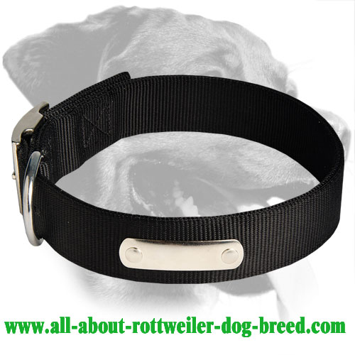 Rottweiler All Weather Nylon Collar with ID tag