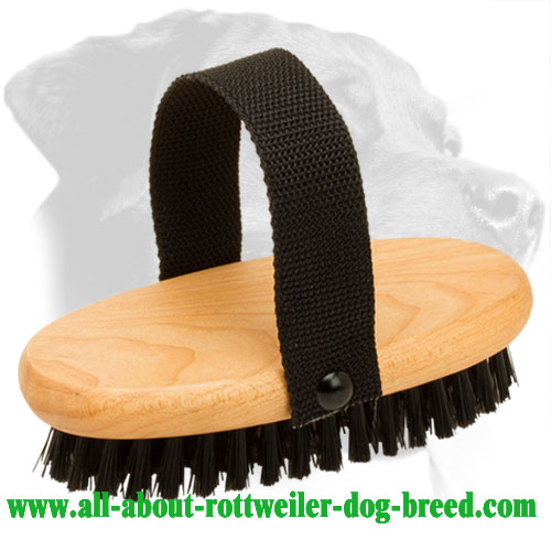 Rottweiler Grooming Brush for Astonishing Dog Coat