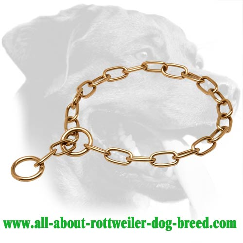 Curogan Choke Collar for Disobedient Rottweilers - 1/9 inch (3 mm) Link Diameter