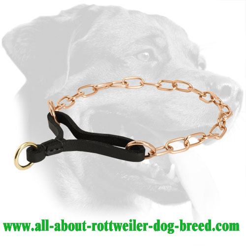 Buy Curogan Rottweiler Martingale Choke Collar Behavior Correction