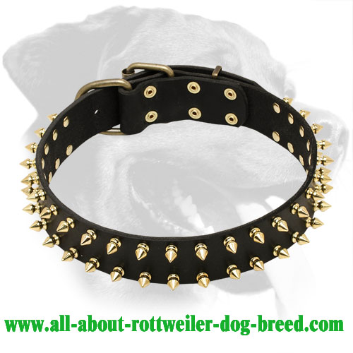 Aggressive Style Rottweiler Genuine Leather Collar