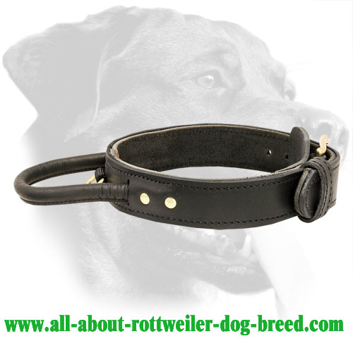 Training Leather Rottweiler Collar with Handle
