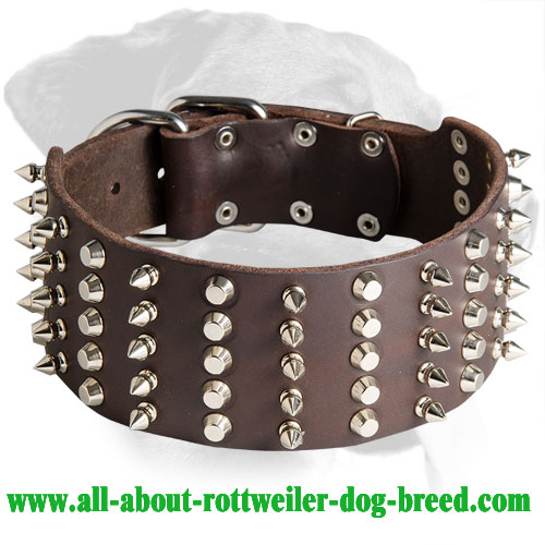 Excellent Spiked and Studded Rottweiler Leather Collar