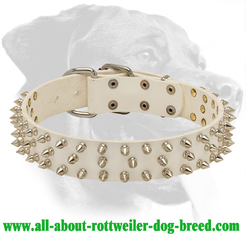 Noble Look Rottweiler Genuine Leather Collar