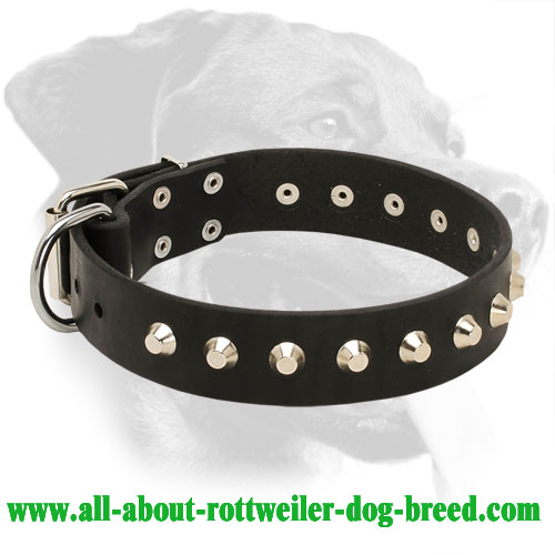 Rottweiler Everyday Leather Collar