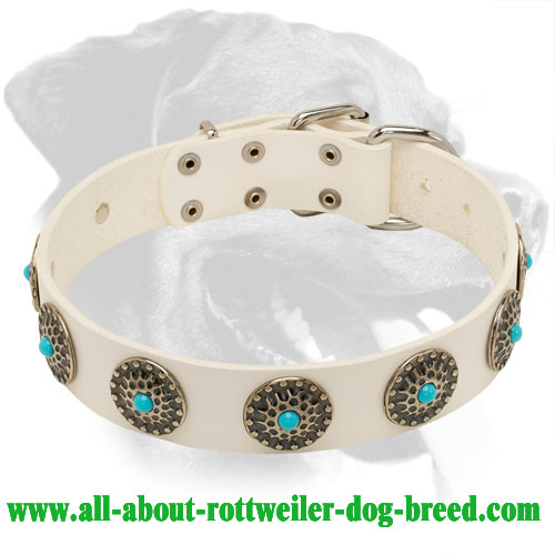 White Leather Rottweiler Collar with Silver Plated Circles and Blue Stones