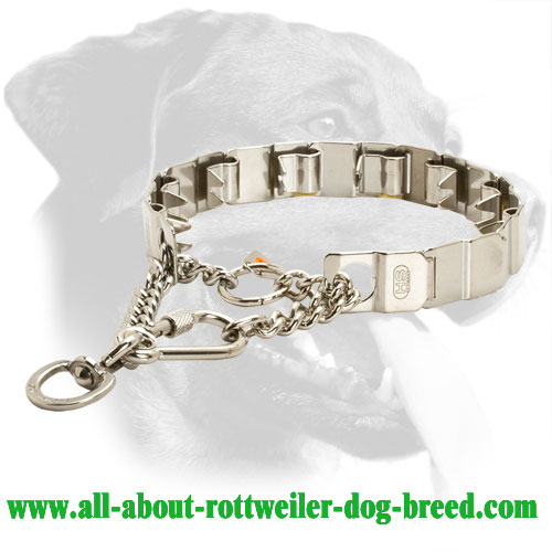 Rottweiler Neck Tech Pinch Collar for Behavioral Correction