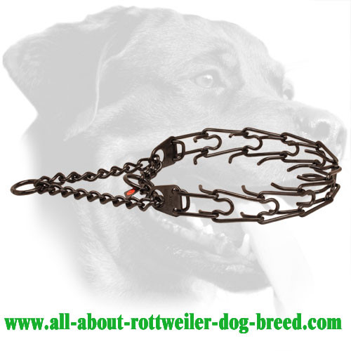 Black Stainless Steel Rottweiler Pinch Collar for Behavior Correction, 1/8 inch (3.2 mm) Prong Diameter